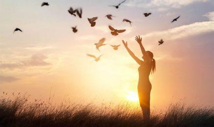 A paz como um estilo de vida do discípulo