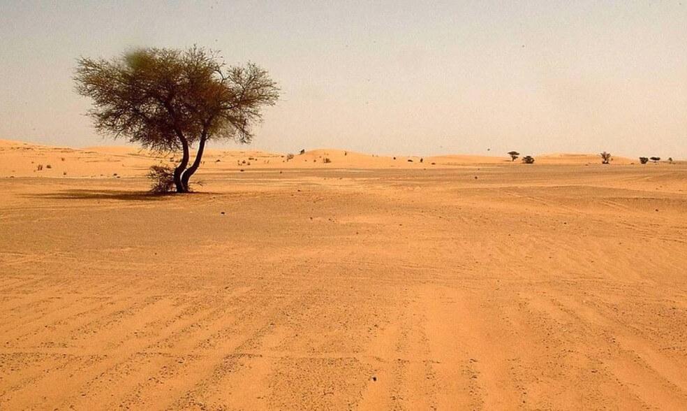 As provações existem para nos transformar - O propósito do deserto